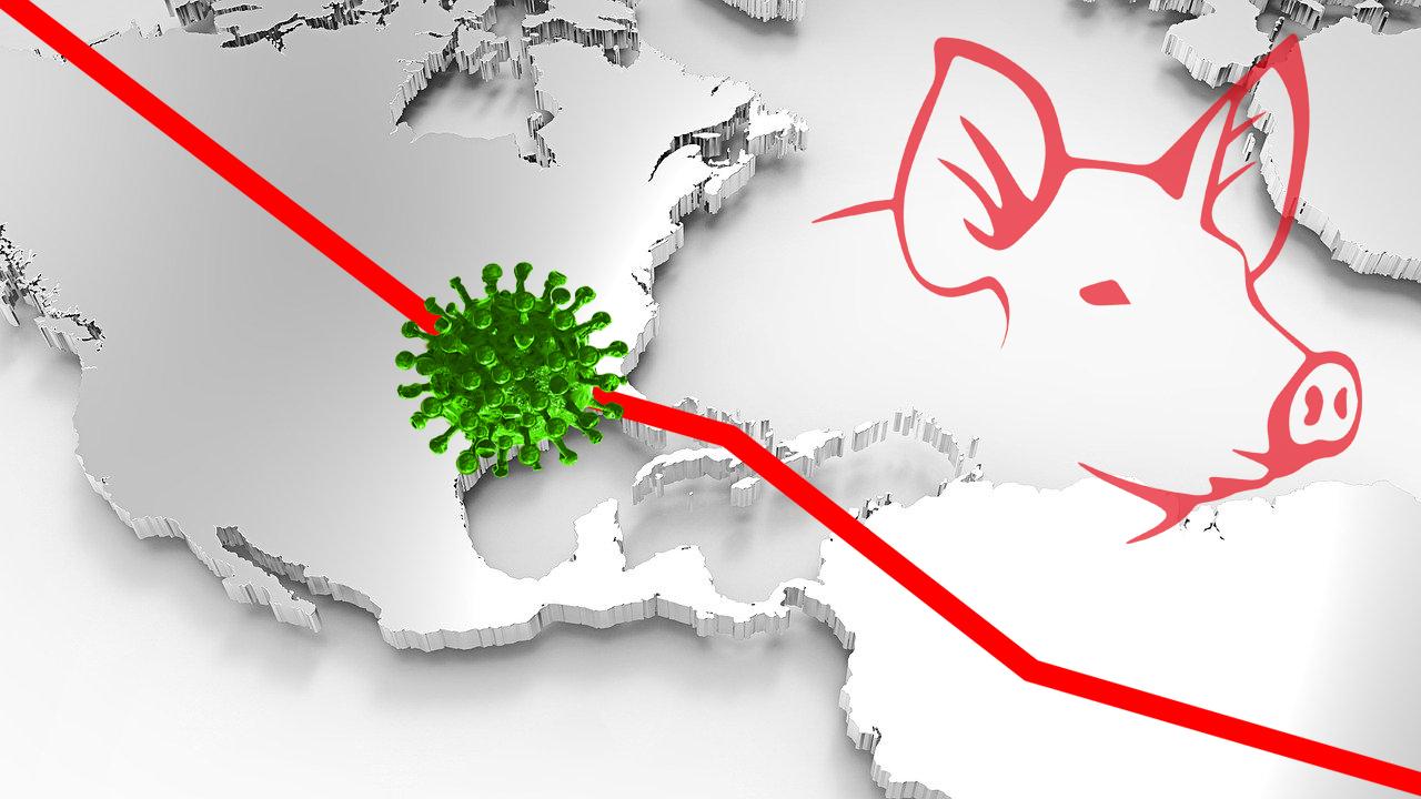 """""""Los problemas del porcino americano ante la pandemia de coronavirus"""""""