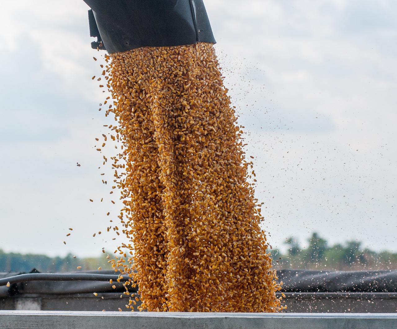 Luis Planas advierte de la subida de precios de las materias primas para alimentación animal