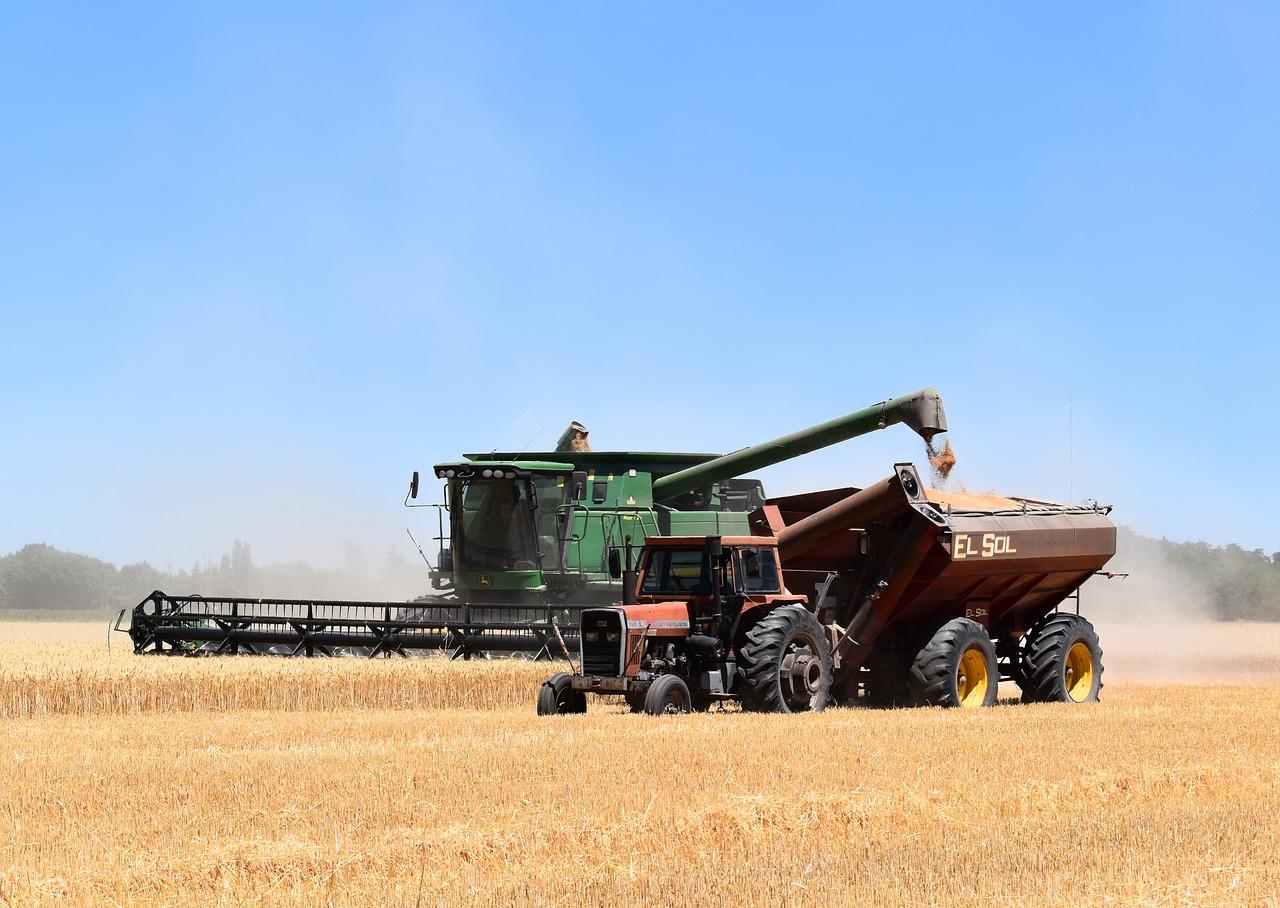 La tercera estimación de Cooperativas apunta a una cosecha de cereales de 24 millones de toneladas